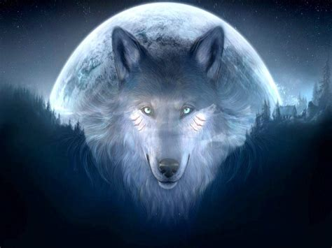 Cool Animal Wallpaper Light Wolf - really cool wolf wallpapers wallpapersafari