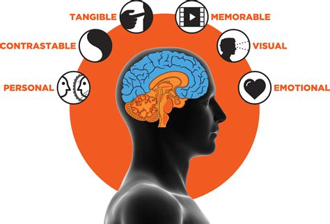 6 Stimuli - SalesBrain: Capture, Convince, Close More Sales