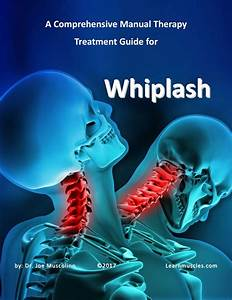A Comprehensive Manual Therapy Treatment Guide For