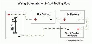Custom 24 Wiring Diagram 3713 Archivolepe Es