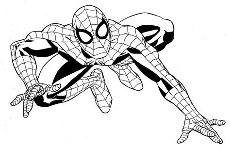 Spiderman Line Drawing At Getdrawings.com