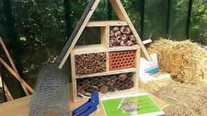 Tiere Aus Holz Basteln : die besten 25 insektenhotel bauanleitung ideen auf pinterest bauanleitung vogelhaus ~ Orissabook.com Haus und Dekorationen