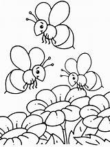 Bee Coloring Pages Print Printable Animals sketch template