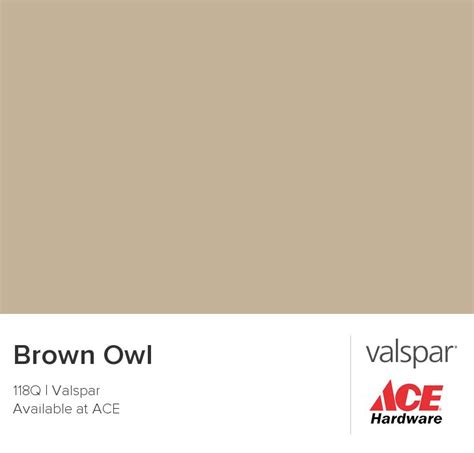 paint color brown owl 1000 ideas about valspar colors on valspar