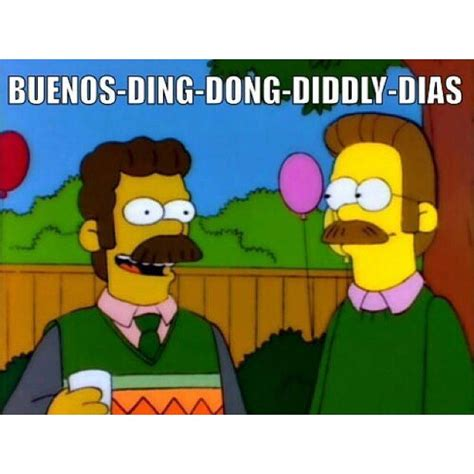 Ned Flanders Memes - 25 best ideas about ned flanders on pinterest simpsons funny how many simpsons episodes and