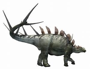Kentrosaurus | Extinct Animals
