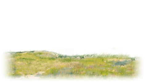 grass clipart watercolor grass watercolor transparent