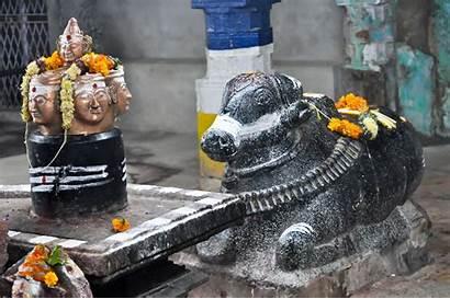 Namah Om Shivaya Shiva Nandi Hindu Symbols