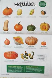 Varieties Of Pumpkins For Cooking by Types Of Squash Garden Pinterest