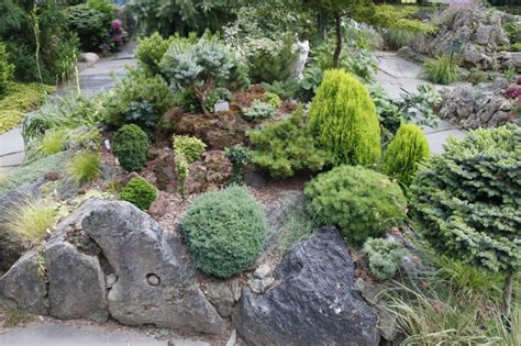 pumice for gardening and black pumice rock garden displaying miniature and