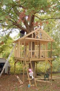 plans for building a house pictures of tree houses and play houses from around the plans and build tips guides