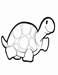Cute Cartoon Turtles Pictures images
