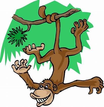 Monkey Hanging Clipart Tree Cartoon Monkeys Anime
