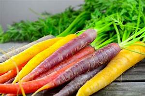 The History Of Carrots And Carrot Colors