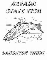 Trout Coloring Nevada Fish State Lake Tahoe Cutthroat Pages Lahontan Printable Windy Sheet Drawings Pinwheel Fun Hull Christine Copyright Sketch sketch template