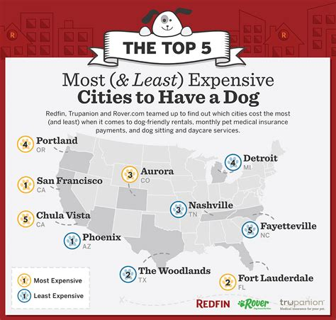 The Top 5 Most (& Least) Expensive Cities To Have A Dog
