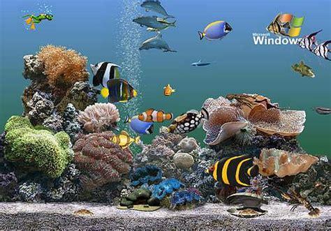 fond d ecran anime qui bouge gratuit fond d ecran aquarium qui bouge gratuit apexwallpapers