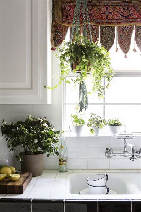 Small Plants For Kitchen Window macrame hanging plant holder modern macrame home decor