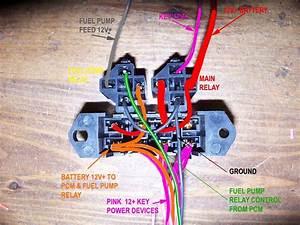 Ls1 Wire Harness Diagram : fuel pump wiring ~ A.2002-acura-tl-radio.info Haus und Dekorationen