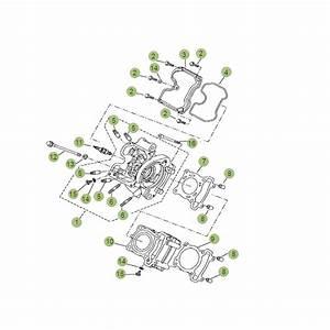 Beta Rr 125 Lc Ersatzteile : beta rr125 lc 13 zylinder zylinderkopf ventiltrieb 1 im ~ Jslefanu.com Haus und Dekorationen
