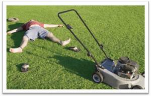 The Complete Lawn Mower Buying Guide  U2013 Powertoolbuzz