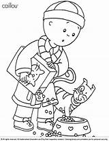 Caillou Coloring Pages Printable Library Canadian Sarah Calliou Clipart Collection Print Shrek Adults Clip Template Szinezo sketch template