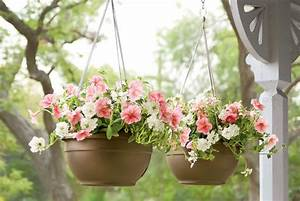 Hanging Baskets for Plants, Self Watering ON SALE