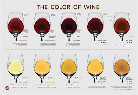 light red wine for beginners the wine color chart wine folly