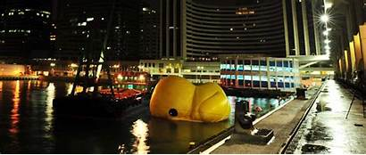 Rubber Duck Giant Florentijn Town Hofman Kong