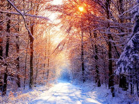 Best Desktop HD Wallpaper - Winter Wallpapers