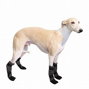 whippet dog booties dog shoes dog