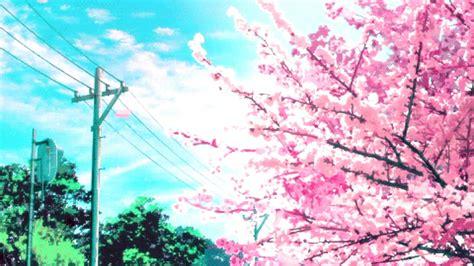 Anime Cherry Blossom Wallpaper - pink cherry blossom wallpaper 62 images