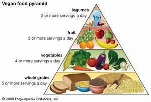 vegetarianism - Kids   Britannica Kids   Homework Help