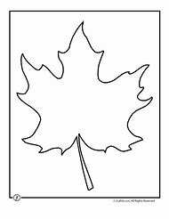 Best leaf template ideas and images on bing find what youll love maple leaf template printable maxwellsz