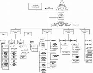 National Incident Management System Femagov Party