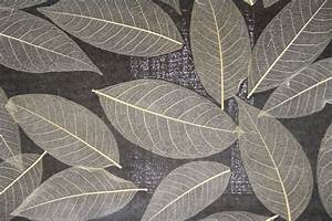natur tapete kaufen kork ua natur tapeten online shop With balkon teppich mit tapete mit blättern