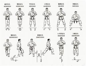 Posiciones Karate | #Karate | Pinterest | Judo, Search and ...
