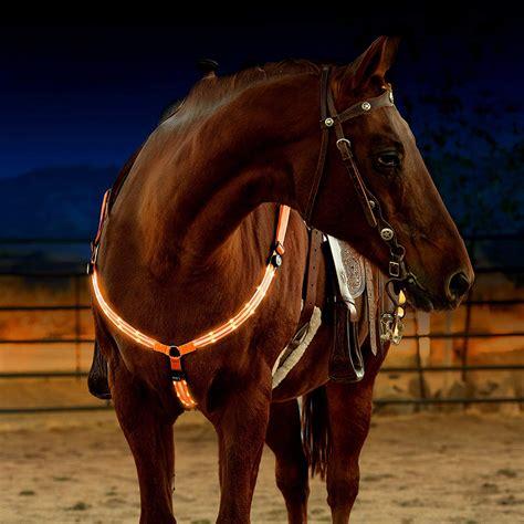 horse equestrian hi viz tack sturdy visibility visible horseback comfortable adjustable riding safety gear makes