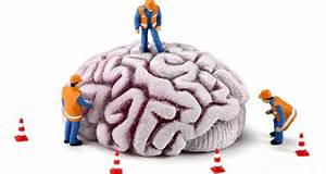 ¿Qué beneficios aporta la neuroplasticidad? - Las ...