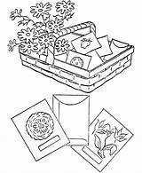 Coloring Pages Spring Gardening Seeds Garden Vegetable Sheets Activity Printable Plant Planting Eucharist Sports Popular Activities sketch template