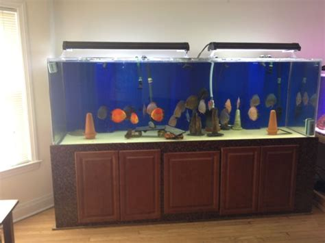 360 gallon aquarium acrylic sell or trade for 600 gallon tank 4000 60645 aquariums