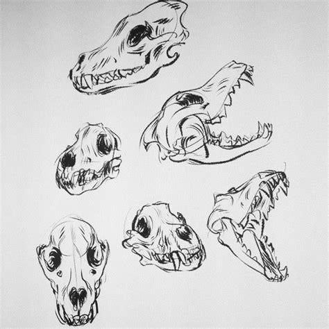 Best Wolf Head Drawing Ideas Pinterest How