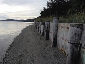 Shoreline Bulkheads Impose Changes On The Natural