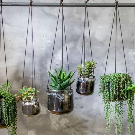 Product Of The Week Wall Hanging Glass Planters by Recycled Glass Hanging Planters Accessories For The Home