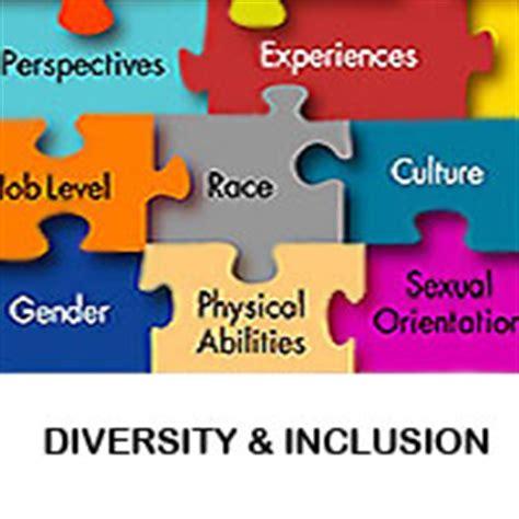 equity diversity california state university northridge