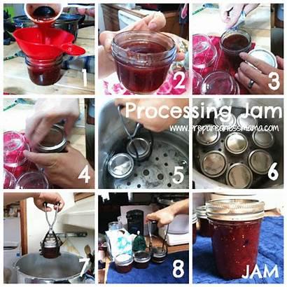 Jam Processing Preparednessmama Process Homemade