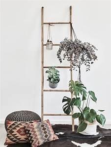 Zimmerpflanzen Für Wenig Licht : zimmerpflanzen in r umen mit wenig licht westwing ~ A.2002-acura-tl-radio.info Haus und Dekorationen