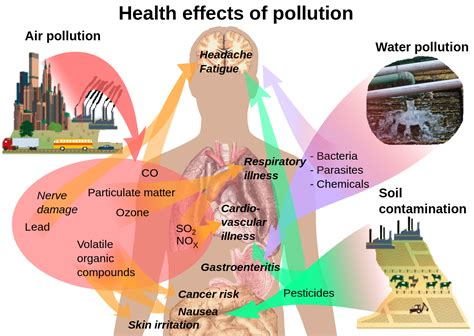 Health Effects Of Pollution.svg