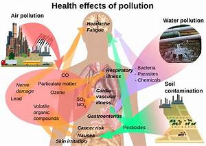 File Health Effects Of Pollution Svg