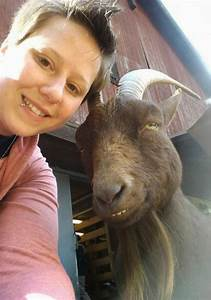 Funny, Animals, Taking, Selfies, With, Humans, 35, Pics